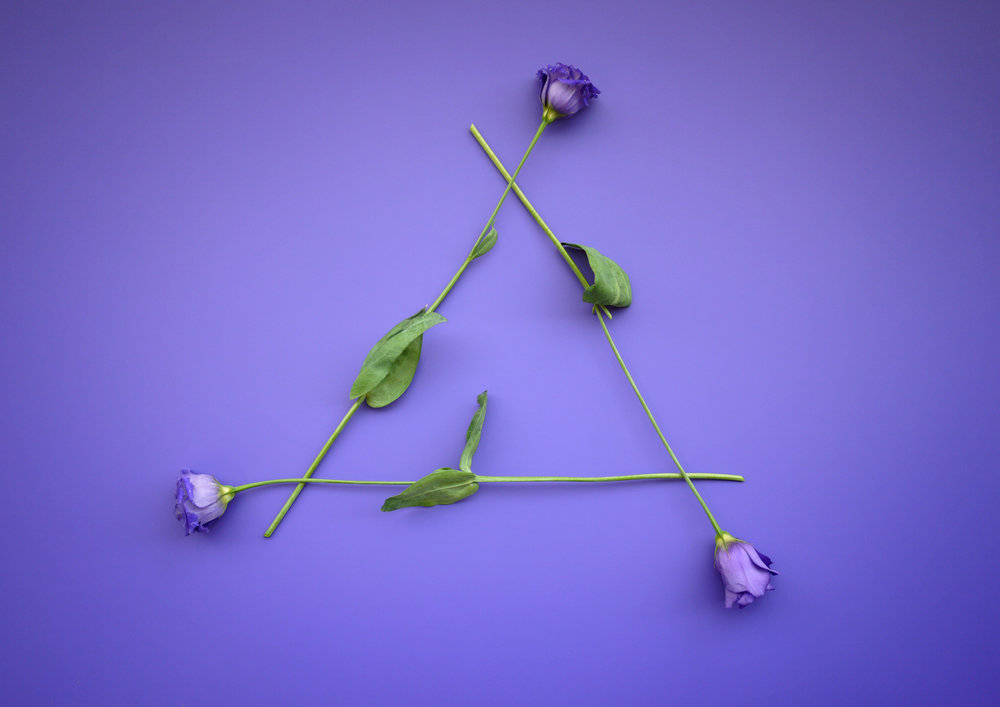 Flower Triangle.jpg