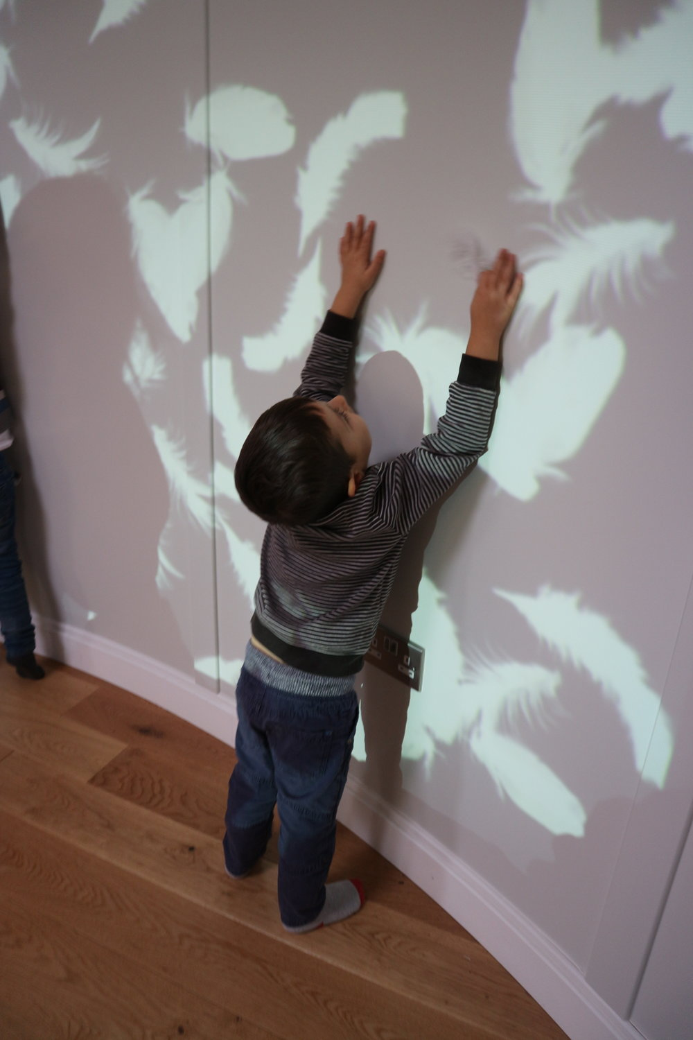 Feather Projections - Deliciously engaging, delightfully inspiring