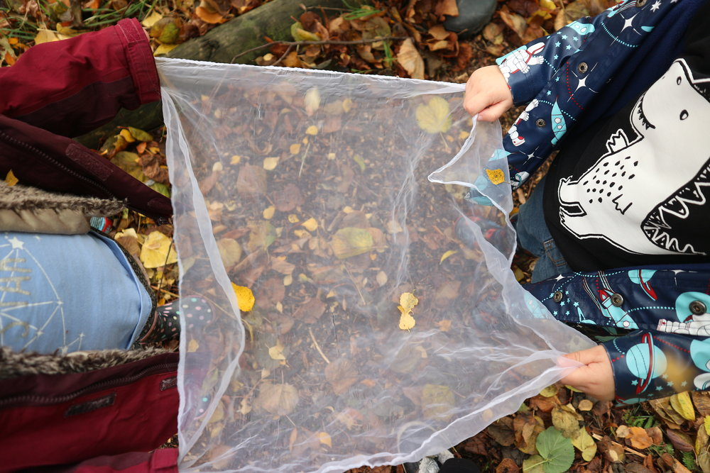 Catching autumn treasures…. - Teamwork, discovery.