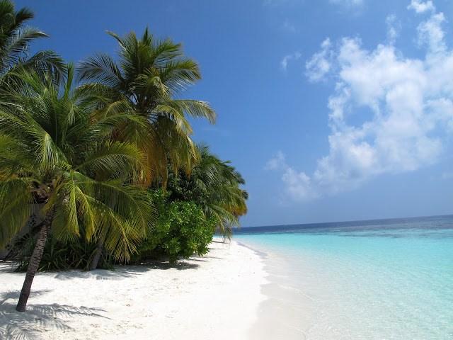 - Las Islas Maldivas, formadas por más de mil islas coralinas, están situadas en el cálido océano Índico y disfrutan de una privilegiada climatología con una temperatura media de entre 29 y 32 grados y el agua del mar entre 27 y 29 grados, en cualquier temporada.