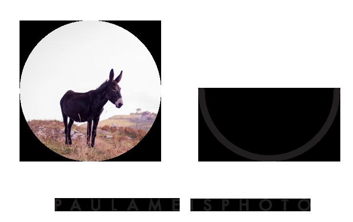 PaulaMeisPhoto.png