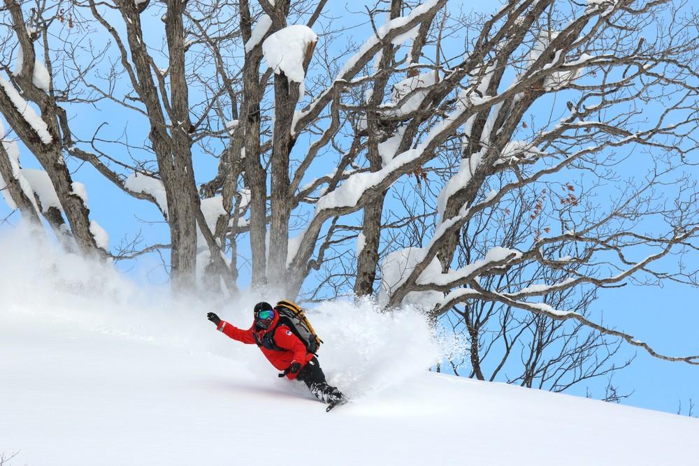 - Niseko United está formada por cuatro estaciones conectadas entre sí:Hanazono, Hirafu, Niseko y Annupuri. A pesar de su altura,de 300 a 900 metros sobre el nivel del mar recibe de media 15 metros de nieve cada temporada y es un paraíso para los amantes del freeride con sus 8 Gates.