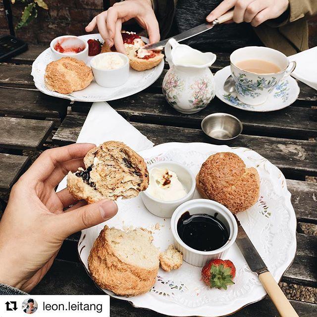 It's a cream tea kinda day 🌞 . . . #creamtea #notts #nottsfood #goodfood #creamteavibin #tea #thursdaytreat #thursdayvibe #courtyard #suntrap #scones #aliceinwonderland #tearoom