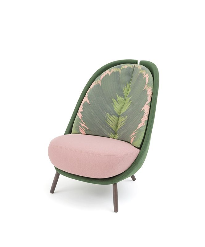 Calatea armchair by Cristina Celestino for Editions Milano