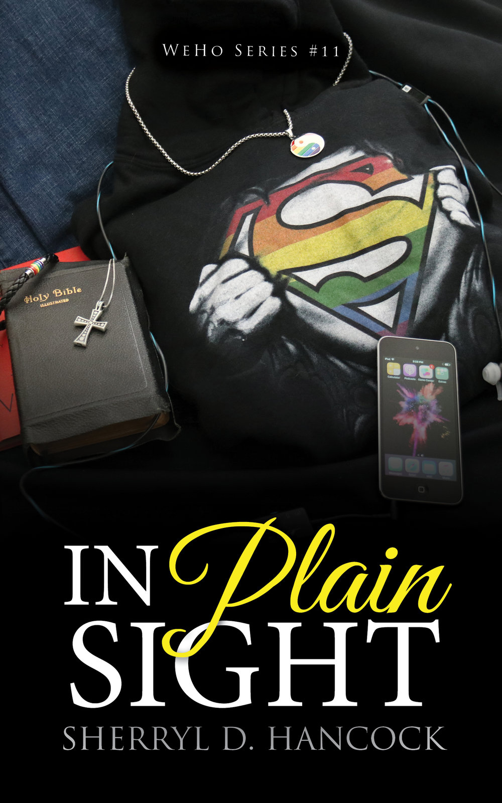 In Plain Sight - eBook.jpg