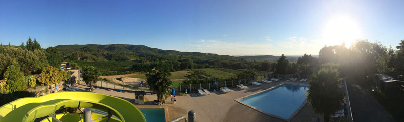 Aquatic Area In The Heart Of The Vineyard