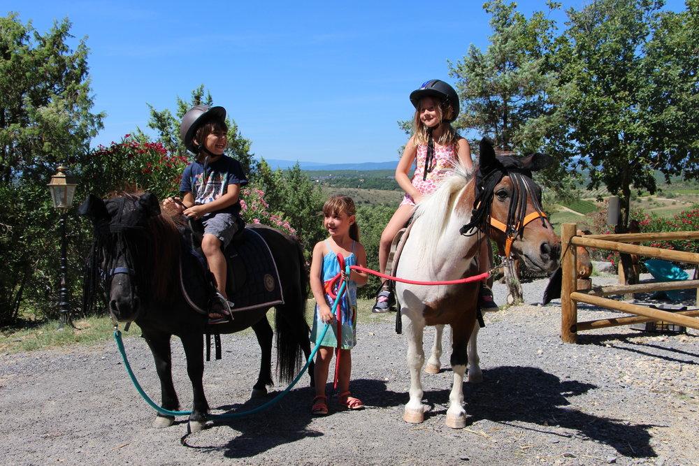 CampingArdècheBaladeponeys-MiniFerme-Poneys-Chamadou-4étoiles.jpg