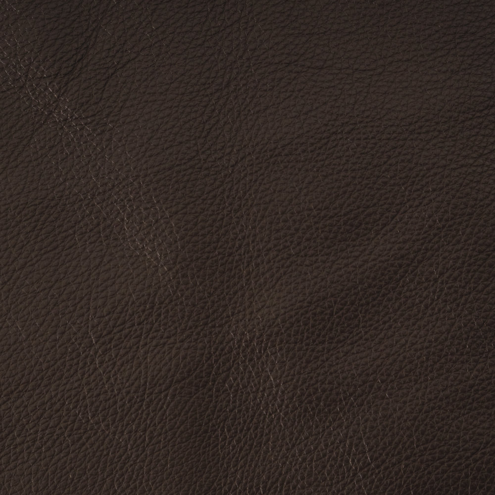 Mesa Espresso Leather