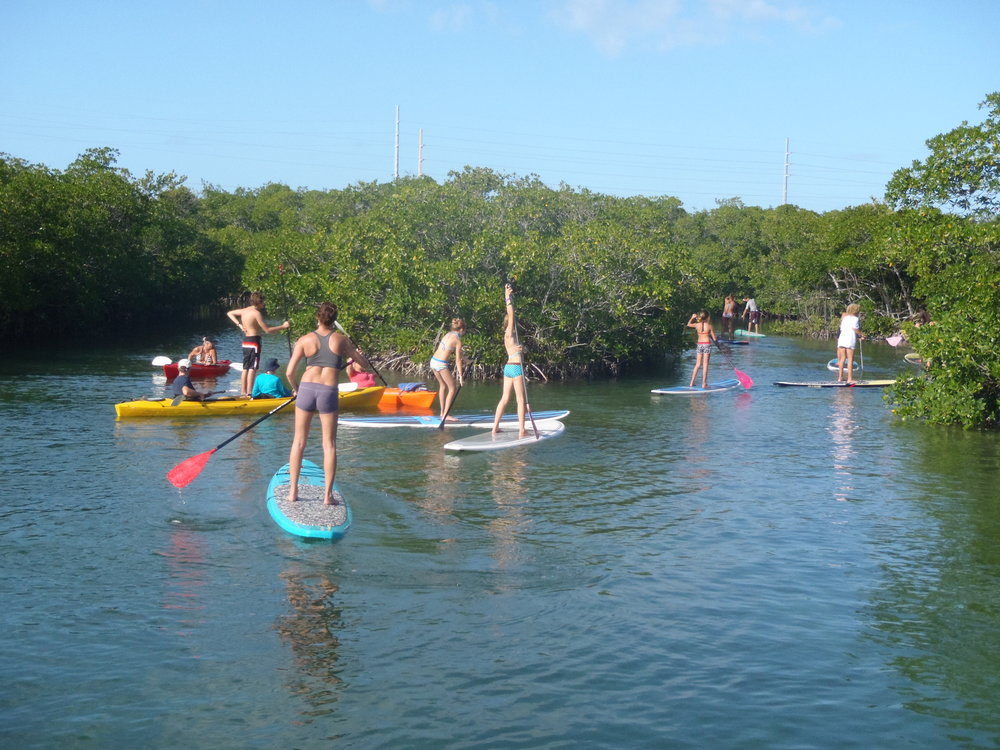 Kayaking Paddle Boarding Key West