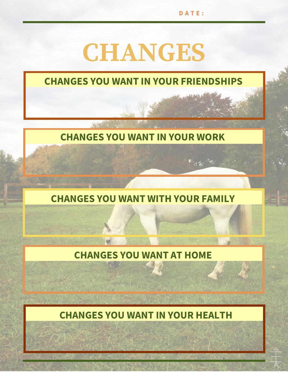 Change Journal.jpg