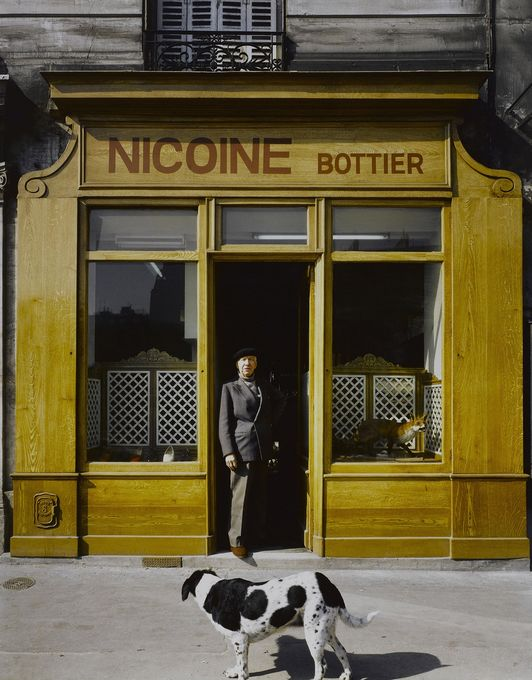 Bottier Nicoine