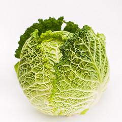 cabbagefreeimagescom