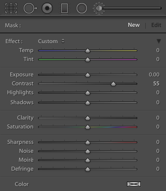 The Adjustment Brush tool settings