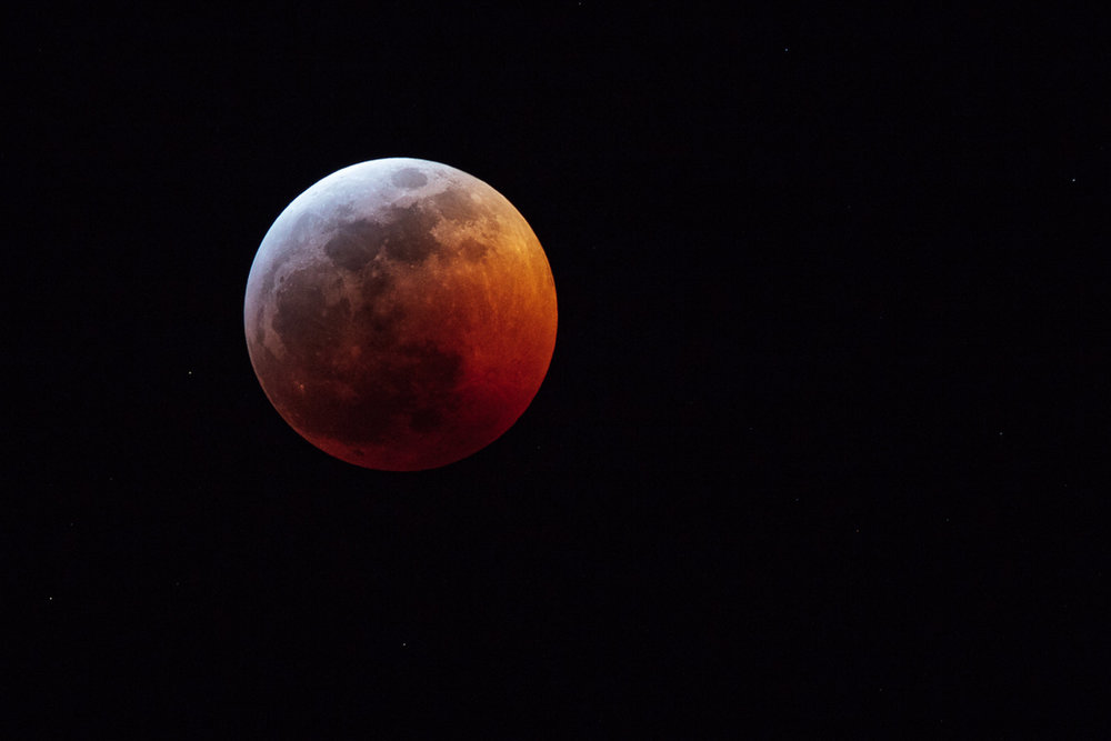 Super Blood Wolf Moon of January 20-21, 2019. This image was captured in Denver