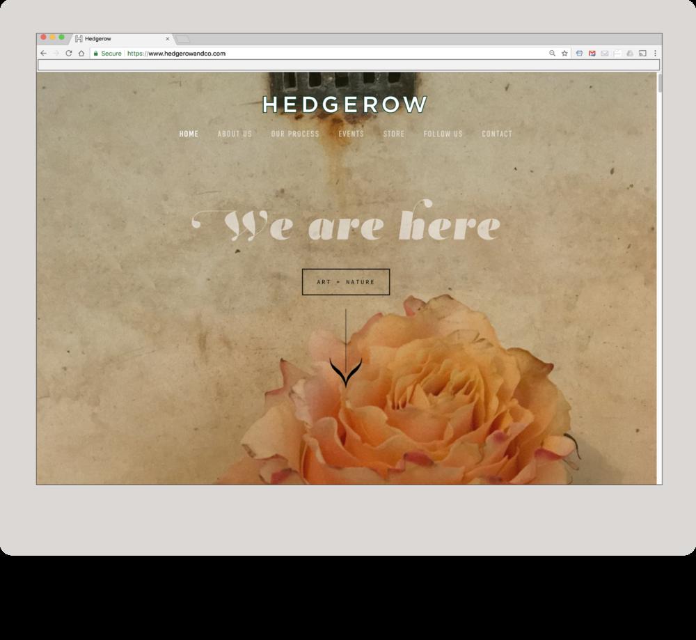 website_3.png