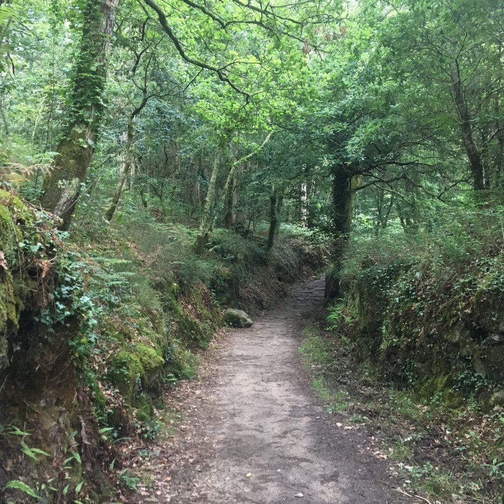 Roman path