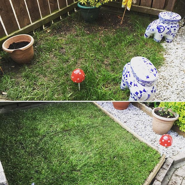Before and after our mini garden makeover at Ella's in #QuarryBankCourt world of a difference made in a small space. Great having volunteers along helping out and getting to know one a another. Next one #Monday (30.4) on Quarry Bank Court. #beforeandafter #GardenNeighboursProject #lovewhereyoulive