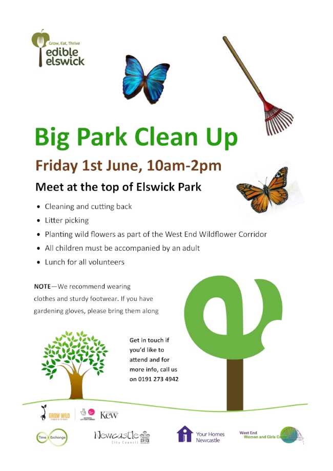 Big Park Clean Up 1.6.18.jpg
