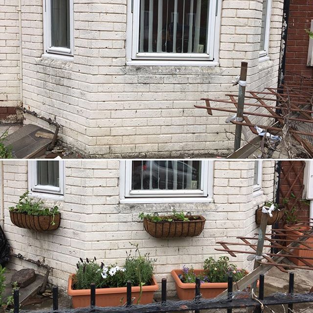 More gardens coming along nicely with our #ElswickGardenNeighbours project. Transforming unloved garden spaces all through community help. #lovewhereyoulive #groweatthrive #elswick #westendncl #newcastle