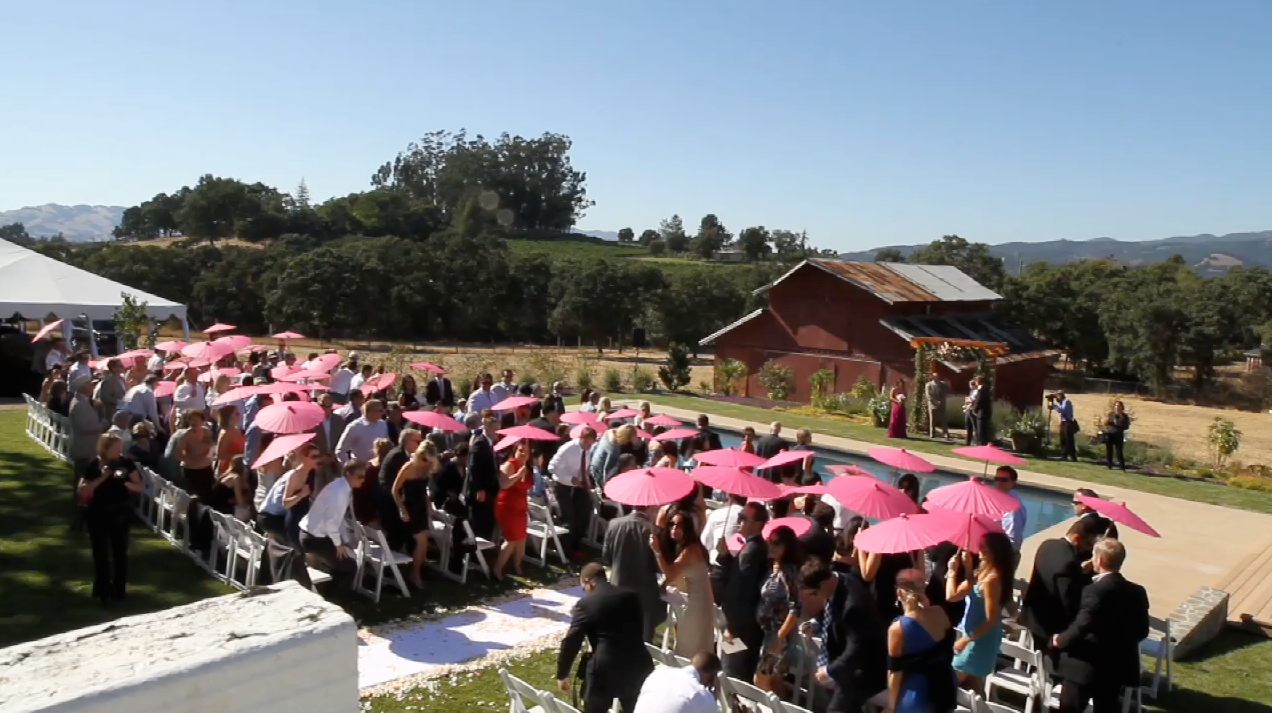 sonoma napa california wine vineyard Wedding Video Pic 01