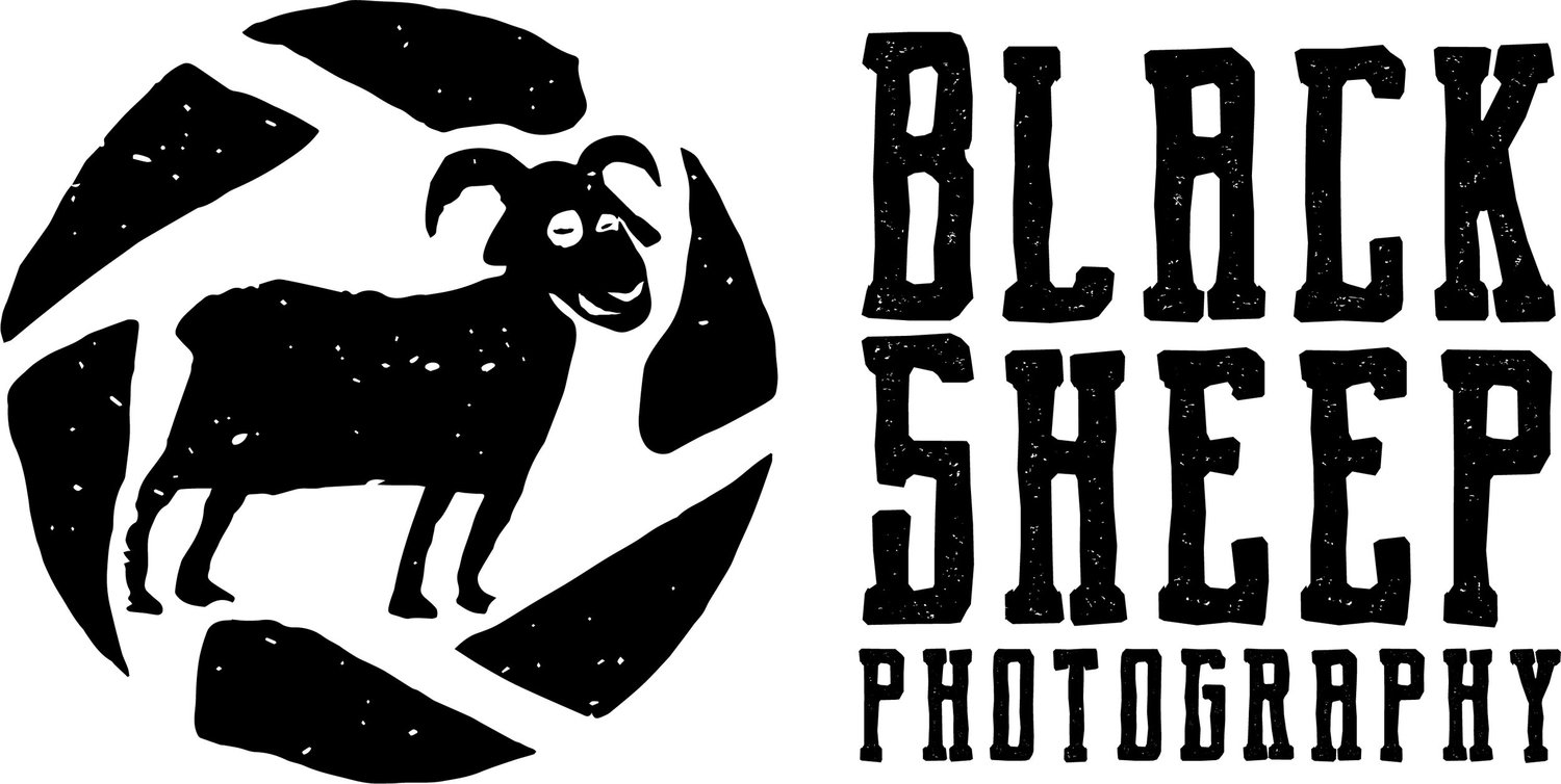 Black Sheep Photography