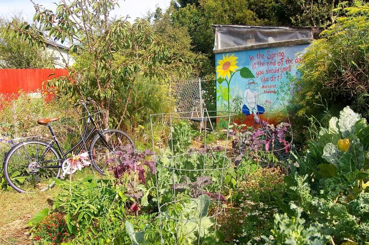 garden-720x479.jpg