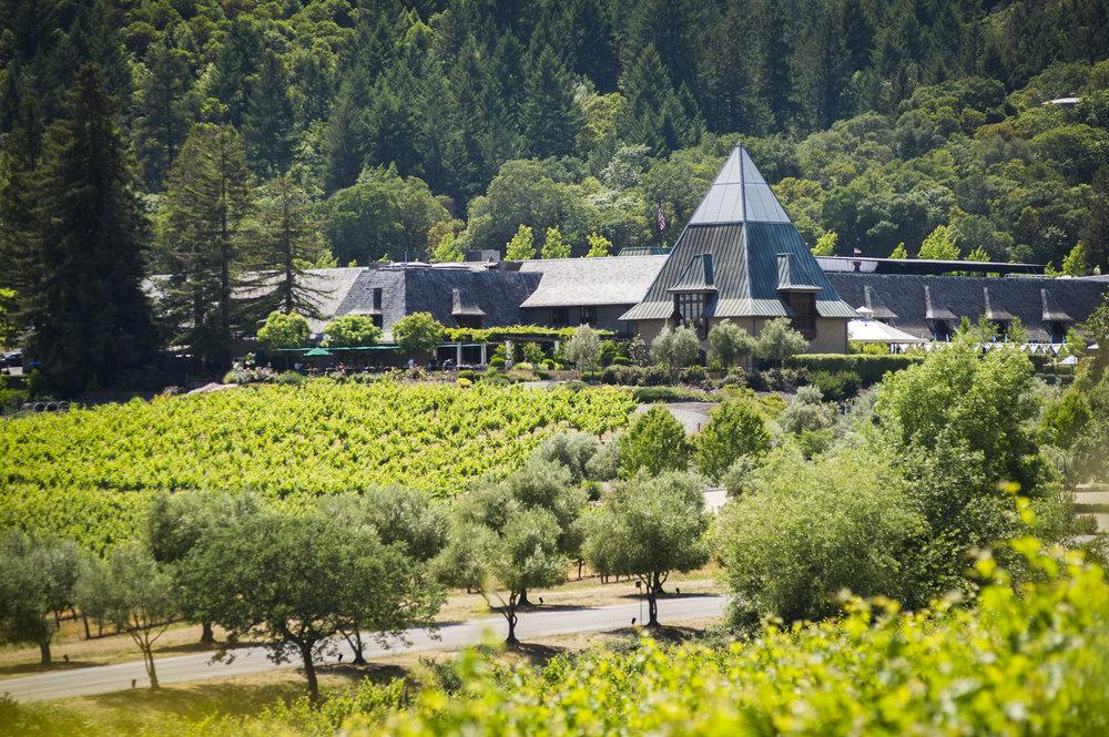 Coppola Winery exterior distance.jpg