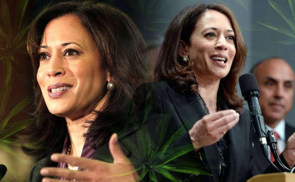 may 10, 2018 | now this - harris cosponsors landmark bill to end federal prohibition of marijuana