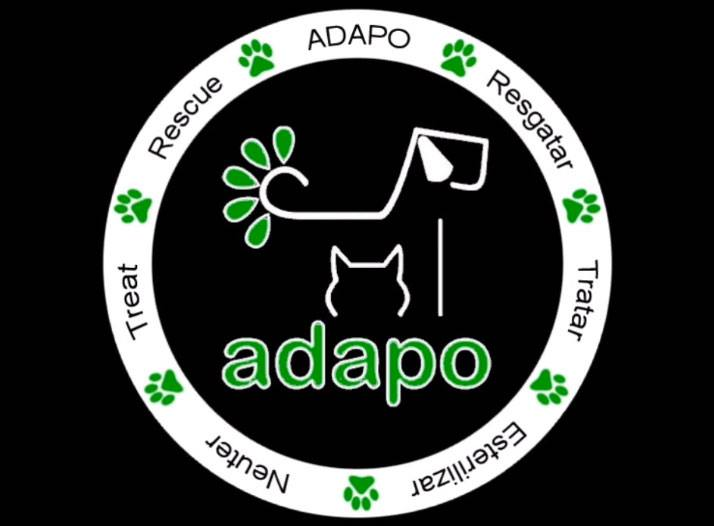 ADAPO-portugal-algarve-neuter-sterilize