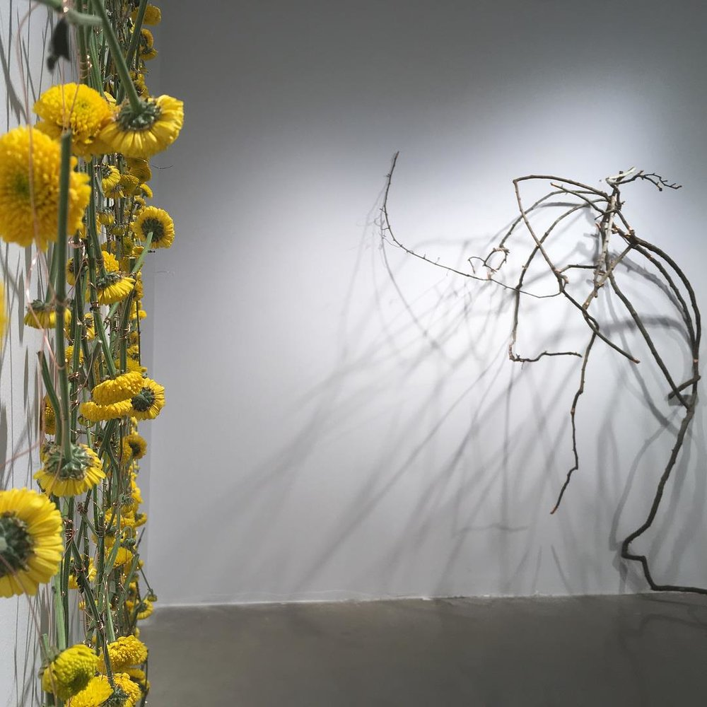 Fortuity     (detail), 2018    Happenstance  , 2018, Wild Grape Vine, Copper Wire  Image Courtesy Peter Eudenbach