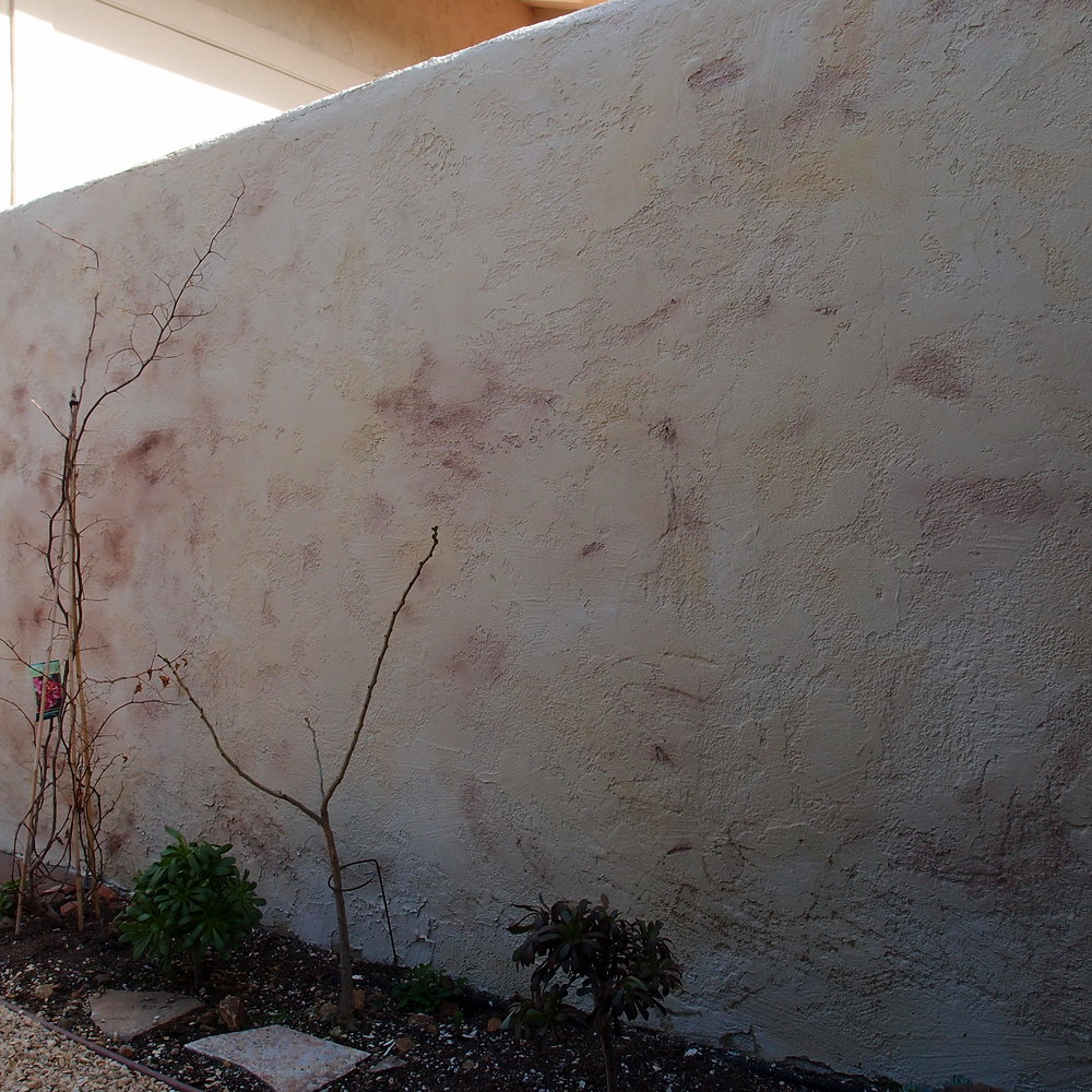 Montecito_Limewash3.jpg
