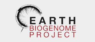 EBG_Logo_graybg.png