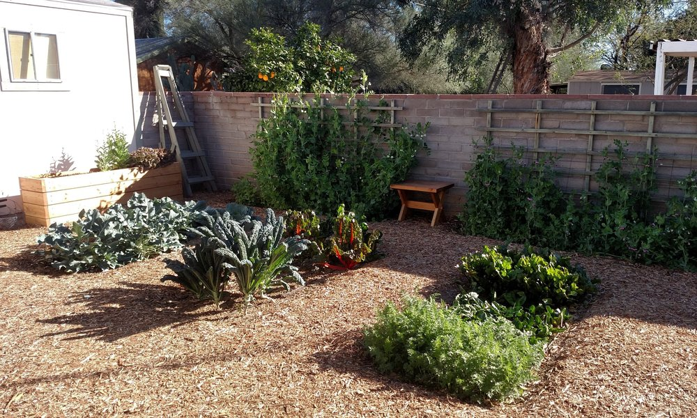 Our Company - Our mission is simple, to arm backyard gardeners and urban farmers with the skills, confidence, and growing environment necessary to grow bountiful gardens in the Sonoran Desert