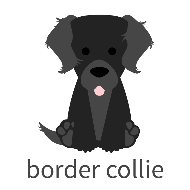 BorderCollie.png