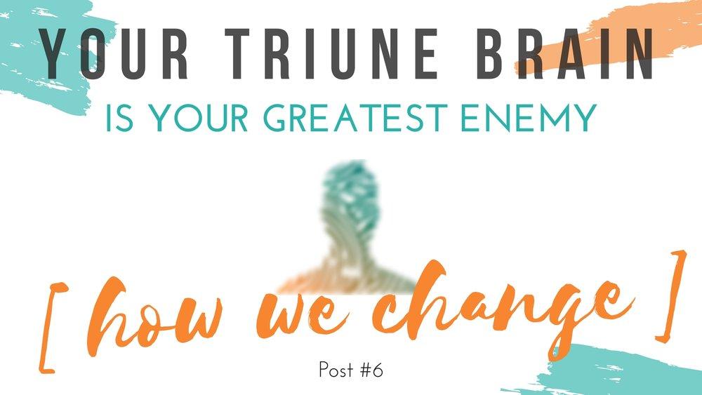Triune Brain.jpg