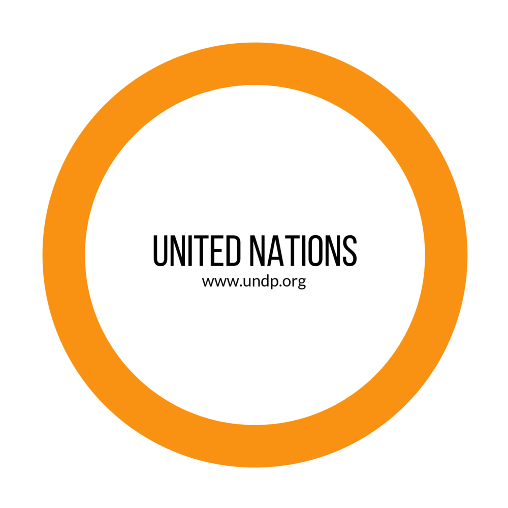 United Nations (3).png