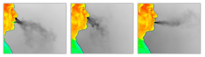 respiratory_1.jpg
