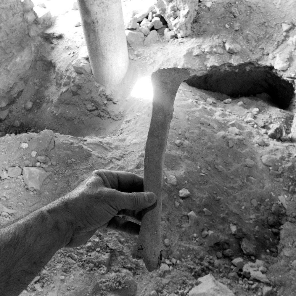 One of many bones of Armenian Saints once buried beneath the stone floor of Hulvanek, a 1200 year old Armenian monastery, Elazığ province (historical Kharpert), Turkey 2015