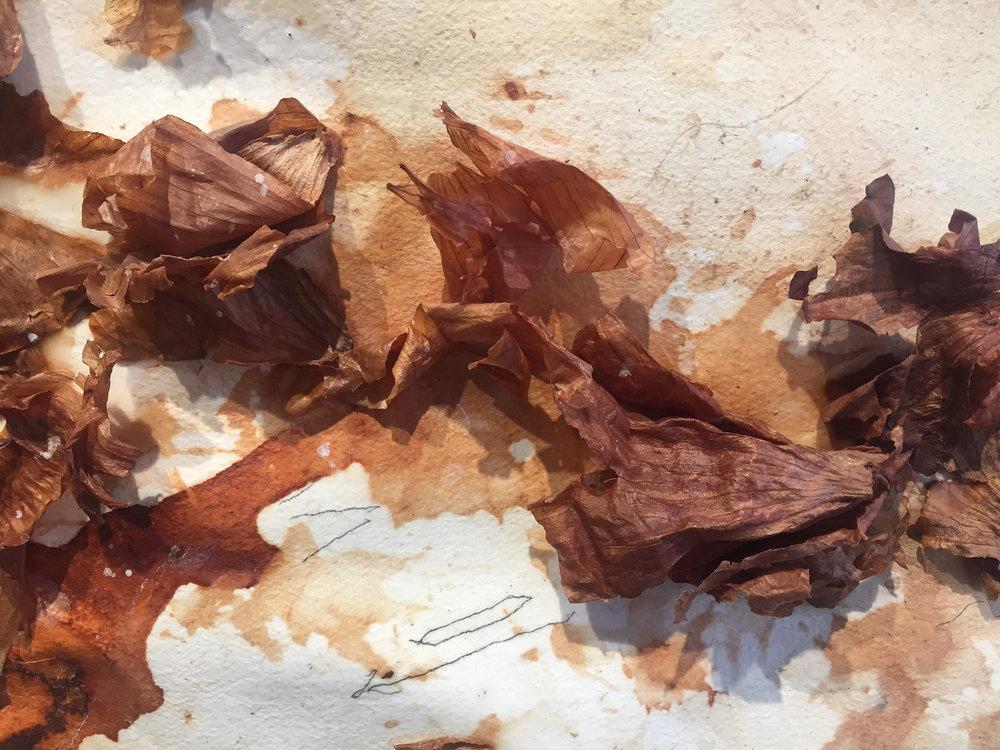 Detail from  Altamira, Marsha Nouritza Odabashian, 2017.