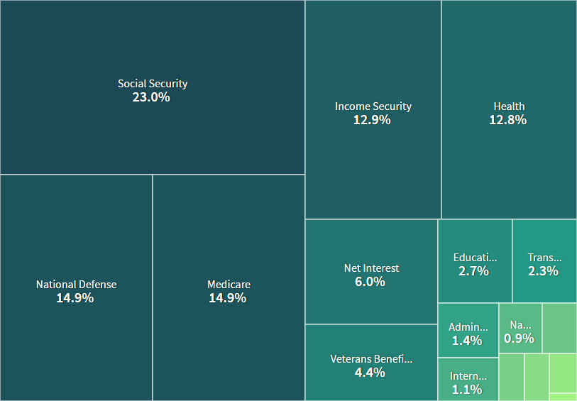 Above is a simplified breakdown of the federal government's spending by spending category.