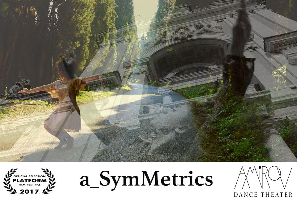 a_SymMetrics flyer 2.jpg