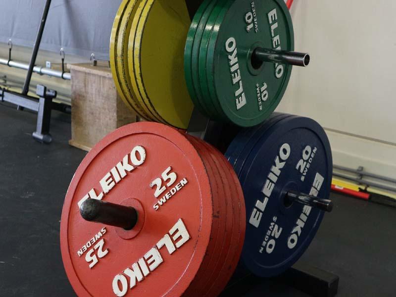 Eleiko-Powerlifting-Plates.jpg