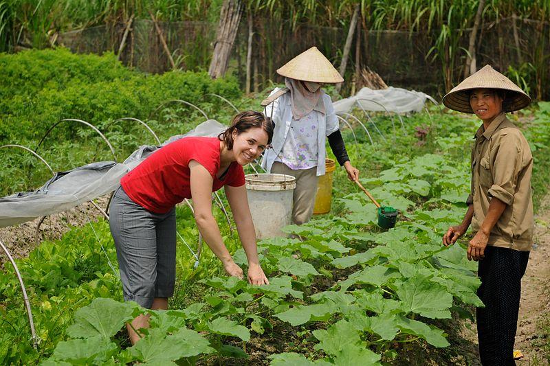 garden volunteer vietnam.jpg