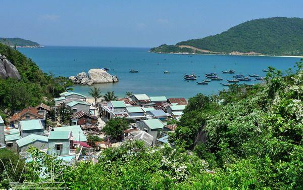 Cu-Lao-Cham-Island-Tour.jpg