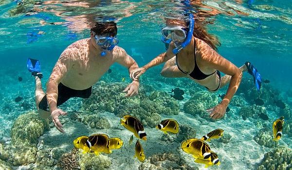 cham snorkel.jpg