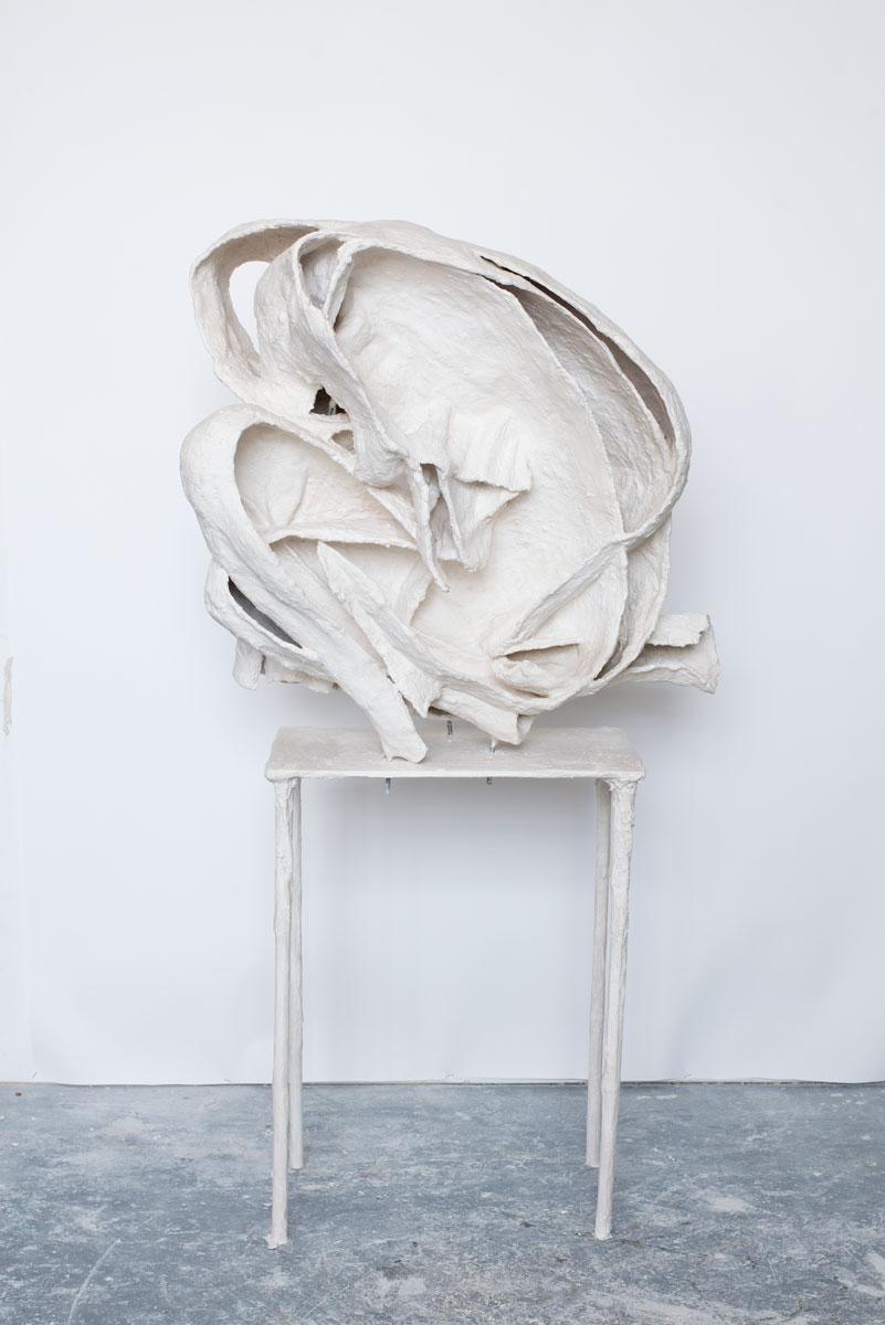 Curl 1, 2013