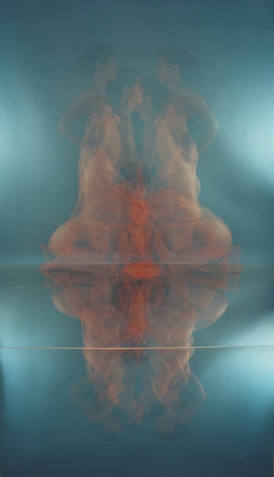 Multiplied #3 , 2012 C-type print mounted on archival board 43 x 79 x 2.5 cms