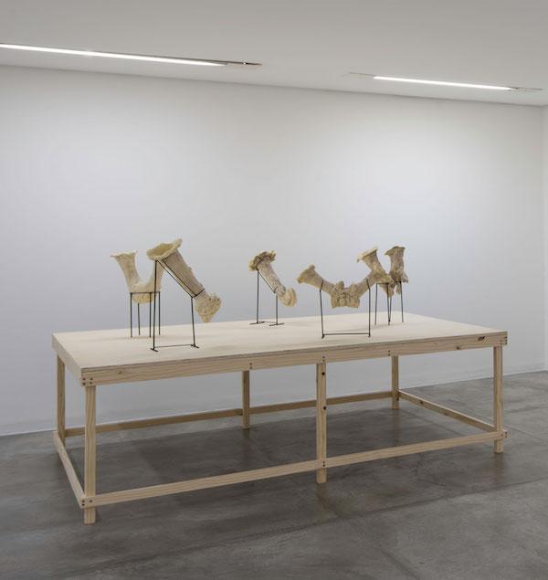 Amphorae , 2013, installation view, Posicional / Positional , 2013, Casa Triângulo, São Paulo, Brazil
