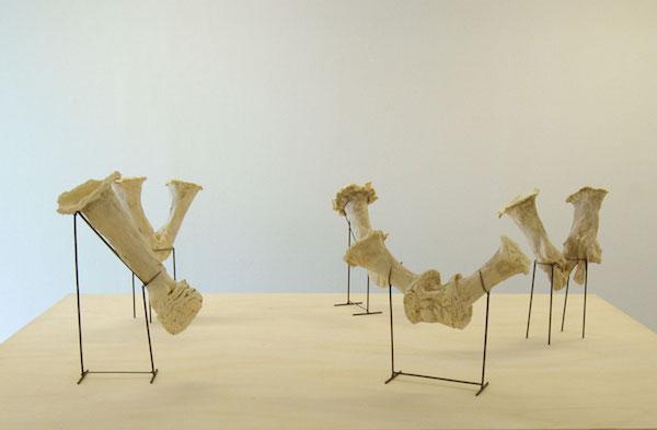 Amphorae , 2013