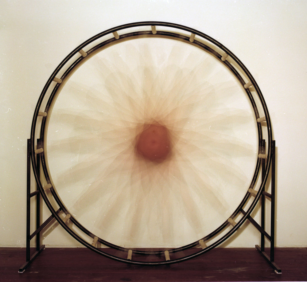 juliana_wheel_02.jpg